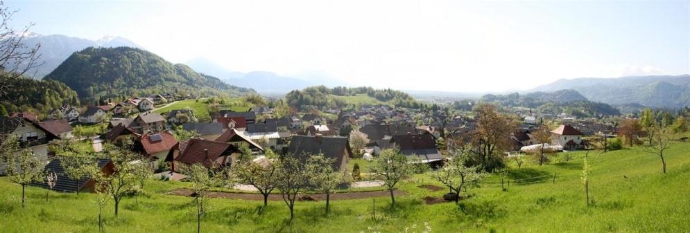 Čebelarska-banner